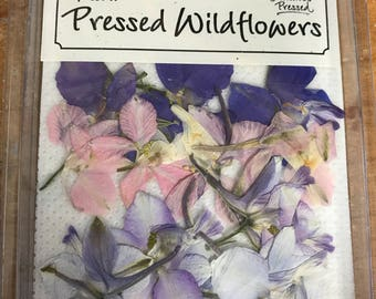 Wild Larkspur 10 pieces assorted colors