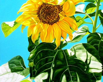 "Sunflower print, 11x14 inch matted print from original oil painting ""Summer Sunflower"" by Sheryl Sawchuk"