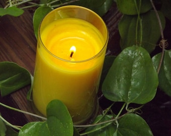 Lemongrass Sage Scented Soy Candle, Eco Friendly Clean Burning, 21 oz candle