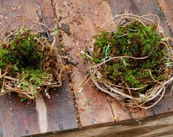 Moss lined birdnests made of wild grapevine