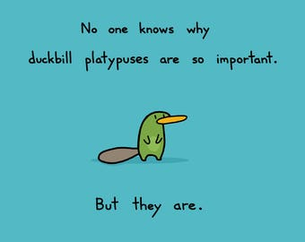 Duckbill Platypuses Are Important Greeting Card