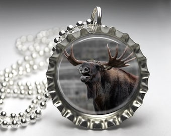 Moose Nature Photography Bottlecap Pendant Necklace Jewelry - Free Ball Chain