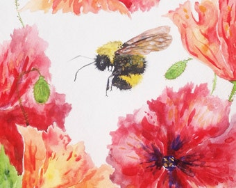 "Watercolor Painting, Poppies and a Bumble Bee, 8""x10"""