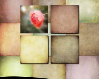 Fine Art Photoshop Textures: Soft Tones