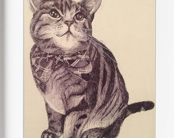 """Biro ink sketch of Tabby cat - """"Milly at Christmas"""" (COPY)"""
