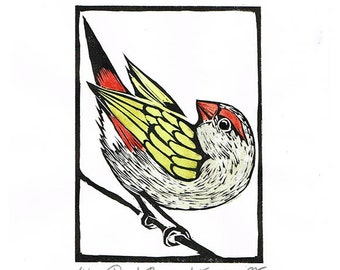 Linocut of a Red Browed Finch with Hand Painted Water Colour, Australian Bird Print, Printmaking, Lino Print