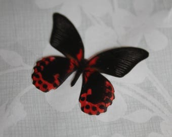 transparent Butterfly red and black 3.5 x 2.9 cm, n98