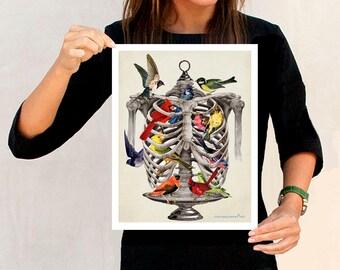 "Birds in the RibCage, Fine Art Print, 11"" x 14"""", Anatomy Medical print, Nurse Graduation gift, Medical Student gift, Skeleton print, Birds"