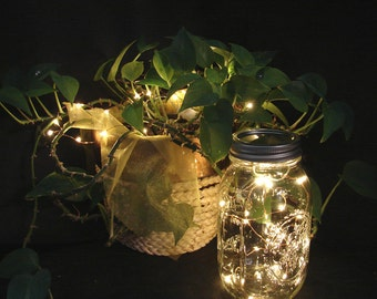 VALUE PACK Fairy Lights for mason jars and centerpieces with REPLACEABLE batteries. You pick quantity. 20 LEDs per wire, warm white lights.