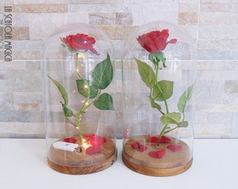 Beauty and the Beast Enchanted Rose in Glass Bell Jar with microled - Handmade in Italy