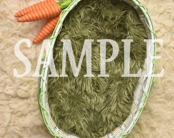 Digital Background: Easter Basket with Carrots