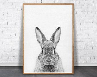 Bunny Print, Nursery Woodland Art, Rabbit Animal Print, Printable Bunny, Black And White Rabbit Photo, Forest Animal Print, Nursery Wall Art