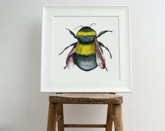Bumble Bee Print, Illustration Bee Print, Bee Art Print, Nature Print, Bee Print, Wall Print, Wildlife Art Print