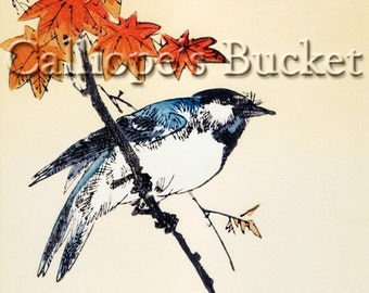 """Blue bird on a maple branch - autumn, Ukiyo-e woodblock print. (all artworks are sold without the """"Calliope's Bucket"""" stamp)"""