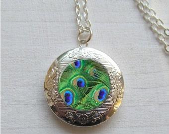 Photo Locket, Locket Necklace, Peacock Necklace, Peacock Feather Necklace