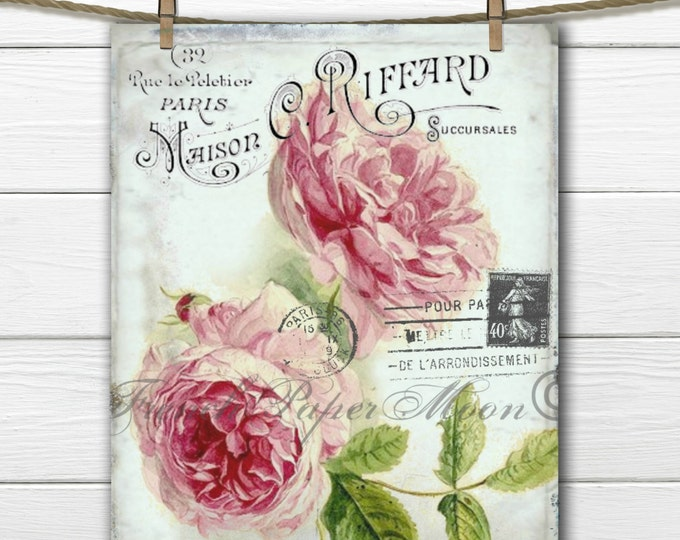 French Digital Shabby Chic Roses, Cottage Roses,French Rose Pillow Graphic Transfer Image, Instant Download