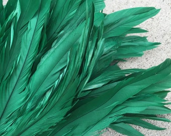 Kelly green coque feathers- green- length 7-10 inches in length, rooster feathers, Tahitian dance costume