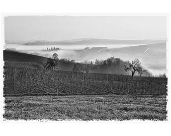 First mists in Monferrato