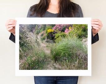 Greece photography, fine art landscape photograph. Serene wilderness art photo, wildflower artwork, natural home decor, large format print