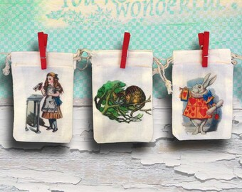 Alice in Wonderland Party Favor Bags | Onederland | Personalized | 3x5 4x6 6x8 Bridal Shower | Baby Shower | Birthday | Wedding | Custom 20