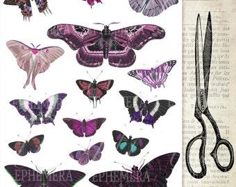 Purple Butterflies digital collage - instant download