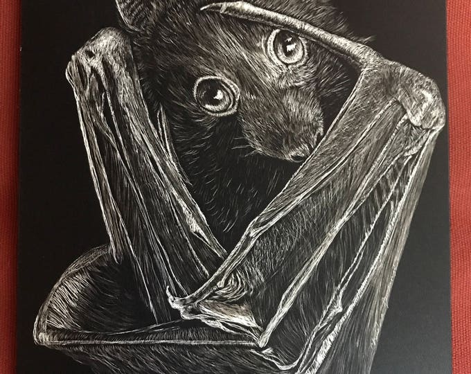 "Flying Fox bat scratchboard -- one of a kind ""Feeling Batty"""