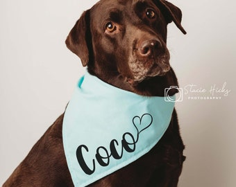 Custom dog bandanna personalized dog bandanna funny dog bandanna