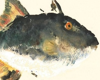 Trigger Happy - Gyotaku Fish Rubbing - Limited Edition Print (15 x 11)