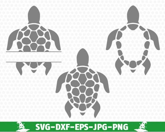 Download Sea Turtle Frame SVG, Sea Turtle Monogram Frame SVG, Svg ...