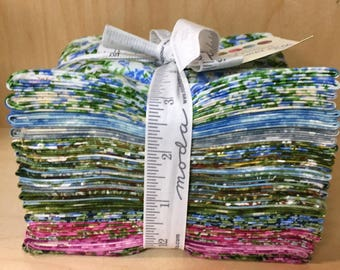 Wild Blue Yonder fat quarter bundle