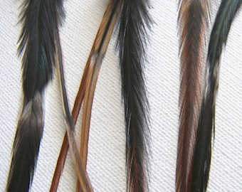 BOHO Rare Banded Feather Hair Extensions, Natural Hair Feather Extensions Wide/Thick
