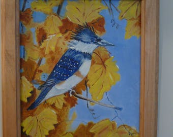 Belted kingfisher in old vines