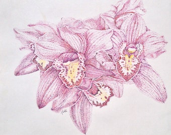 Pink Orchid Ink Illustration - Pointillistic Drawing - Botanical Painting - Boat Orchid  - Pointillism Flower Illustration Pink Orchid