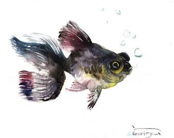 Black Fish Black Moor, Original watercolor painting, 9 X 12 in, black fish art, aquarium fish painting,