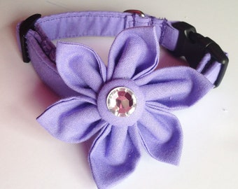 Pretty Purple Wedding Flower Collar for Female Dogs and Cats