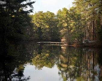 Across the Lake - Portrait