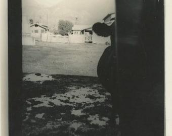 Cow at Barn Door: Vintage Snapshot Photo [85671]