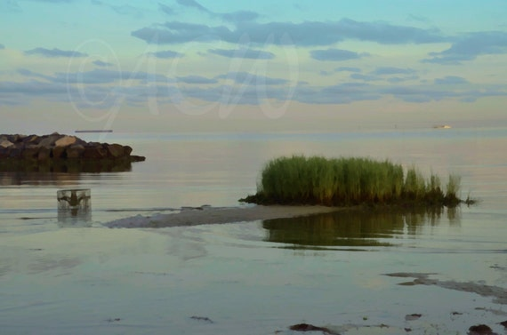 Crab Trap and grass in the surf off Cape Charles Virginia (16 x 20 canvas)