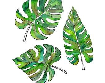 Jungle Leaves -  Limited edition fine art giclée print / A4 / nature / fine art print