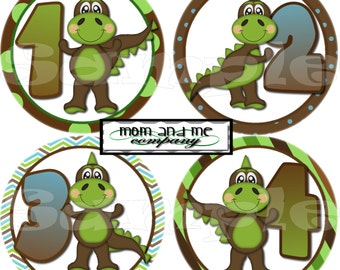First Year Monthly Stickers Month Baby Stickers 1-12 Month Stickers Baby Shower gift Infant Milestone stickers baby Boy Dinosaurs Onepiece