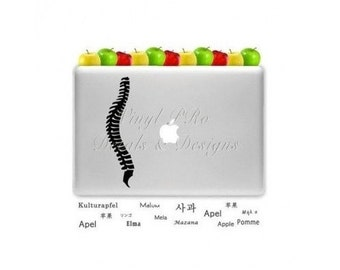 Chiropractor Decal Macbook Spine Anatomy Nervous System Function Subluxation Chiropractic Spinal Care Physiology Decal for Macbook