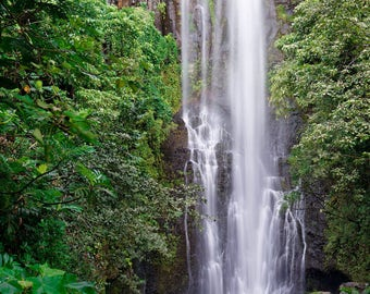 LIMITED EDITION - Hana Falls - Rainforest Waterfall - Maui, Hawaii - Fine Art Print - Home Decor