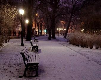 Winter in Riga, Latvia - Fine Art Photography, 8x12 print, winter photography, snow photography, night scene photo, wall art, bench photo