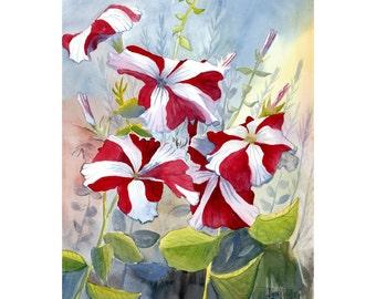 IMPRESSION de pétunia rouge aquarelle peinture paysage Floral fleurs fleur 11 x 14 giclée Reproduction différentes tailles