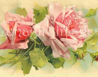 40 PINK ROSES images DOWNLOAD, Vintage roses flowers, Victorian Art Postcards, shabby floral cards scraps, Klein printables Digital Ephemera
