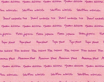 SALE Fabric, Conservatory by Heather Jones Sorbet AHN-16643-239, Houseplant Fabric, Pink Fabric, Text Fabric, Script Fabric