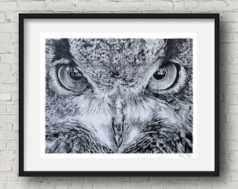 Owl drawing Print, Black and White, Owl Wall Art, Owl Art, Animal Print,Woodlands Decor, pencil drawing Art