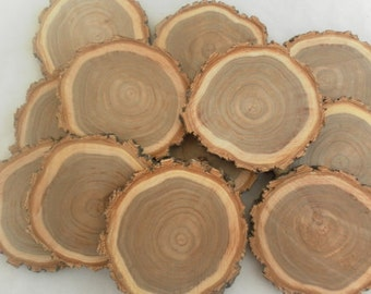 10 Gorgeous Elm Slices ~ Tree Slices ~ Wood Slices ~ Tree Cookies ~ DIY Wedding ~ Rustic Wedding