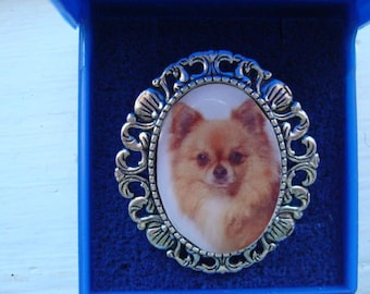 Chihuahua. Brooch, Bracelet and pin brooch