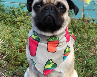 Potted Plant Over the collar bandana